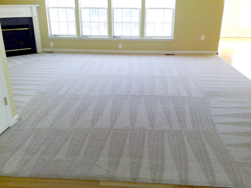 Carpet Repair Beaverton